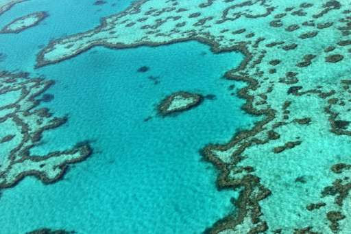 An aerial view of the Great Barrier Reef near the Whitsunday Islands, along the central coast of Queensland