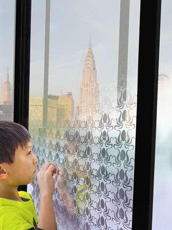 Research team develops 'smart' window
