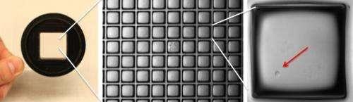 A Single-Cell Breakthrough