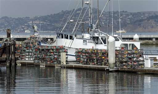 High toxin level delays California crab season