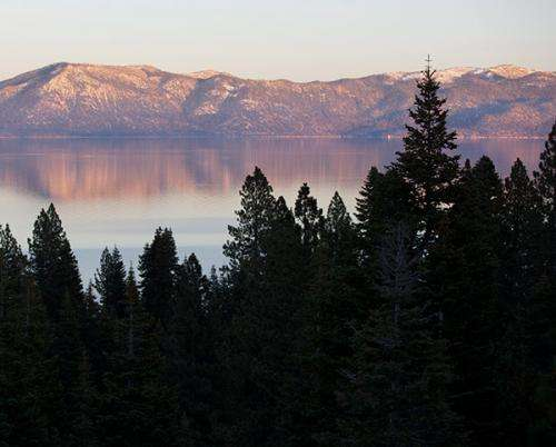 How nitrogen is recycled in the Lake Tahoe ecosystem's food web