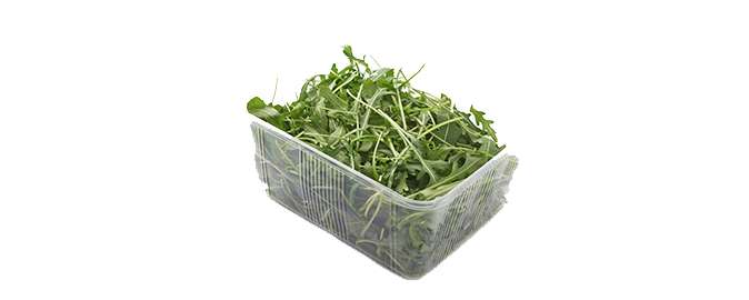 Measurement of volatile organic compounds may reveal wild rocket salad quality