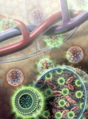 Nano-hydrogels that attack cancer cells