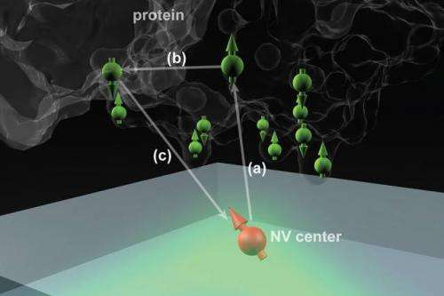 New technique could use tiny diamond defects to reveal unprecedented detail of molecular structures