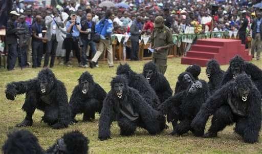 Rwanda names 24 baby mountain gorillas in annual tradition