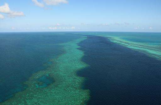 The Great Barrier Reef along the central coast of Australia's Queensland is the world's largest coral reef system