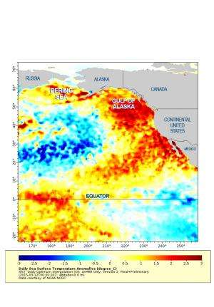 West Coast waters shifting to lower-productivity regime, new NOAA report finds