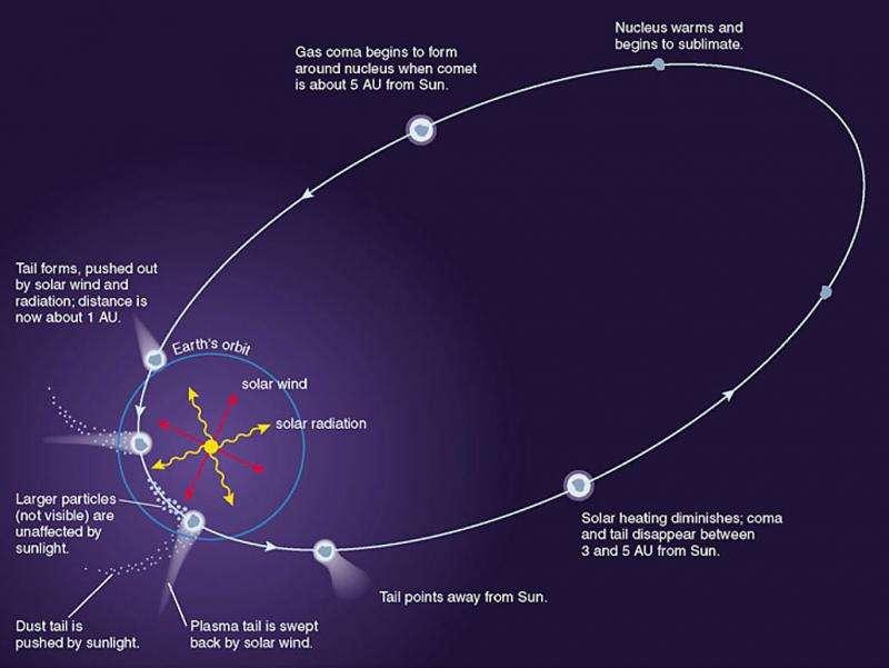 What is the Oort Cloud?