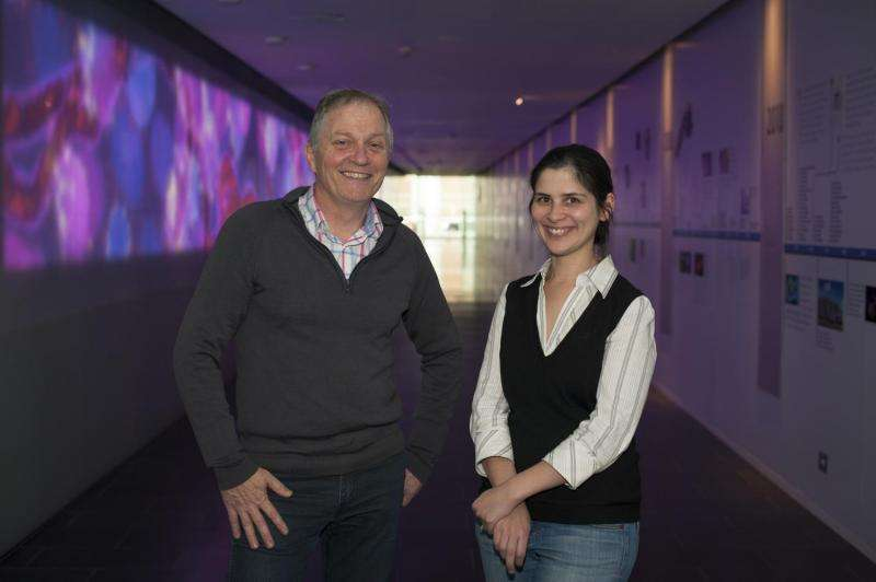 Scientists find molecular switch that creates long-term immunity