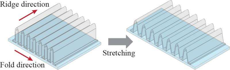 Researchers create transparent, stretchable conductors using nano-accordion structure