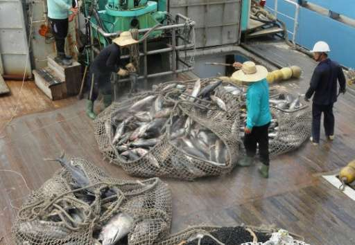 Environmental groups have expressed frustration after a key Pacific fishing industry meeting failed to adopt measures to protect