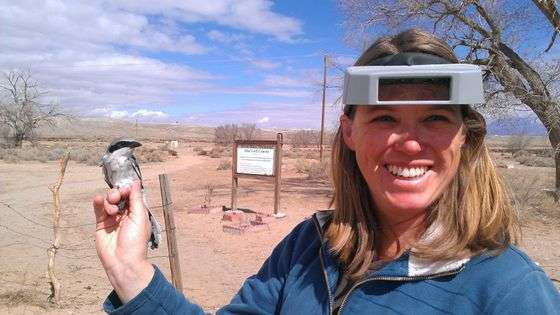 Graduate students explore the effect climate change has on local bird populations