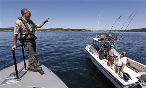 Patrols keep US boaters in line, protect killer whales