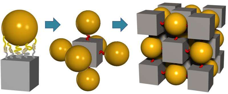Scientists use nanoscale building blocks and DNA 'glue' to shape 3-D superlattices