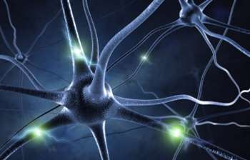 3D-printed guides can help restore function in damaged nerves