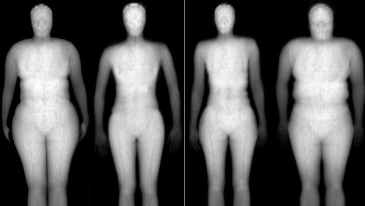 'Evolutionary fitness' key in determining why some females more physically attractive than others