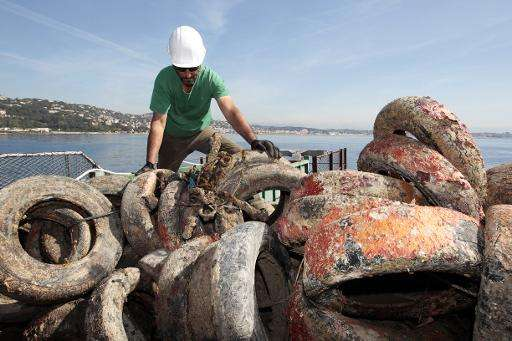 Scientists say the tyres have been dragged around by the sea currents and in many cases broken up, damaging the ecosystem and fa