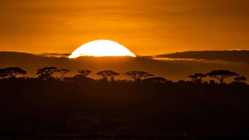Serengeti Park disappearing