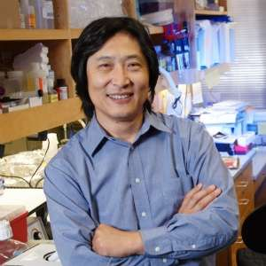 Study details 'rotten egg' gas' role in autoimmune disease