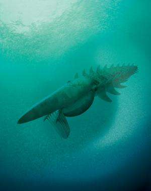 Frankensquid creature roamed seas 480m years ago: study