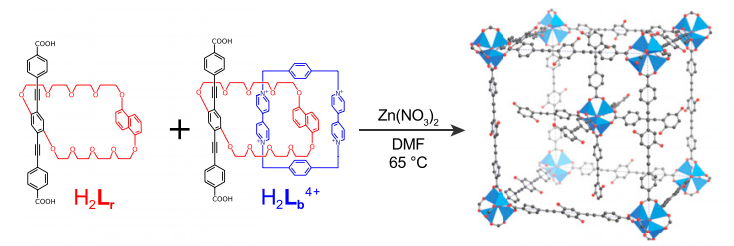 Metal-organic framework with a fixed composition despite initial concentration of components