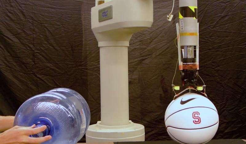 Engineers debut adhesive material based on gecko feet