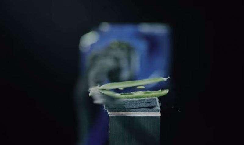 Yaskawa robot makes the cuts like human master in sword demo (w/ Video)