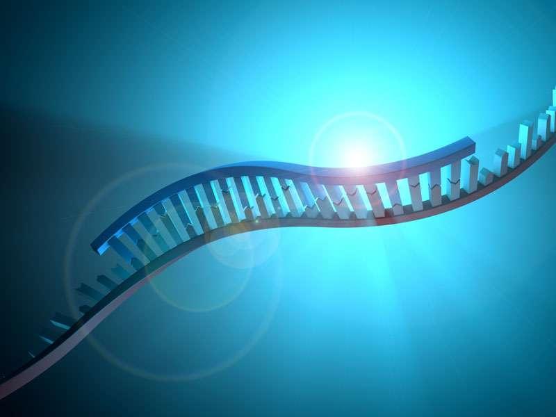 Genetic test may help spot male fertility problems