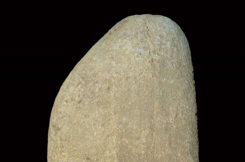 Ancient pestle shows Paleolithic people ground oats for food