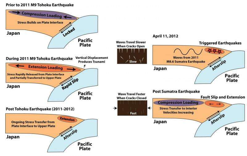 Researchers find cascading elastic perturbation likely contributed to small earthquakes in Japan