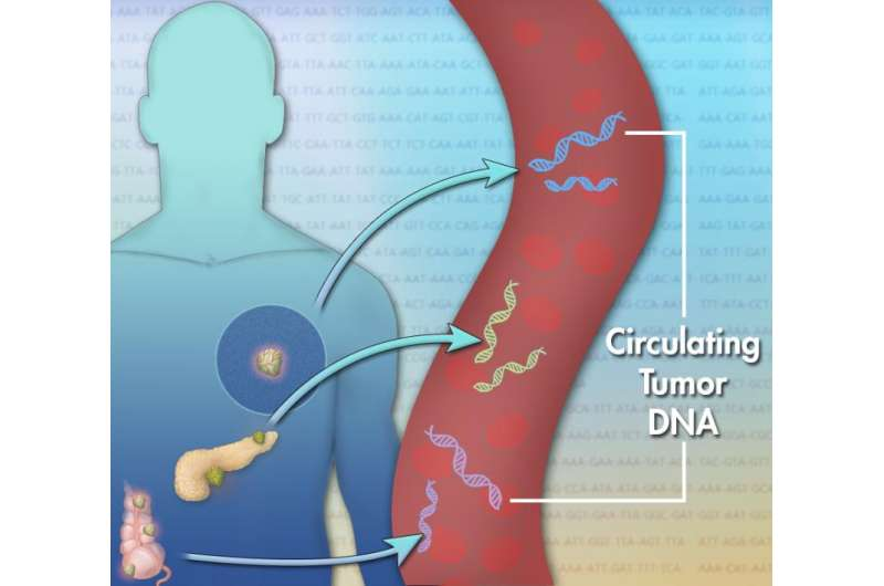 Studying cancer DNA in blood may help personalize treatment in liver cancer