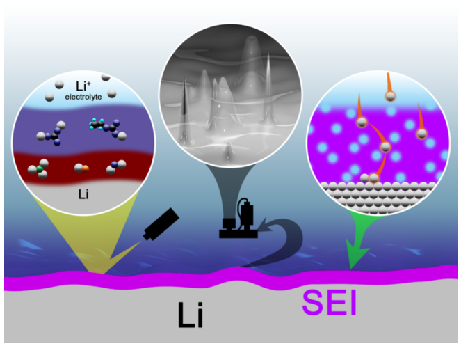 Solid electrolyte interphases on lithium metal anode