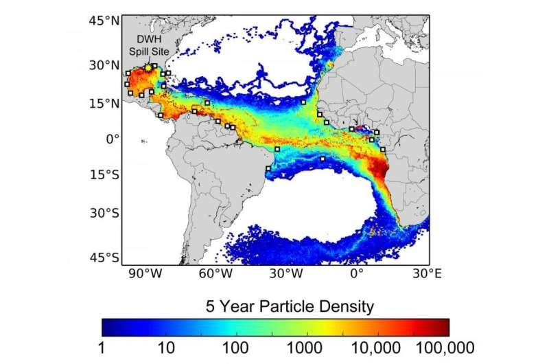 Study assessed impacts of Deepwater Horizon oil spill on sea turtles