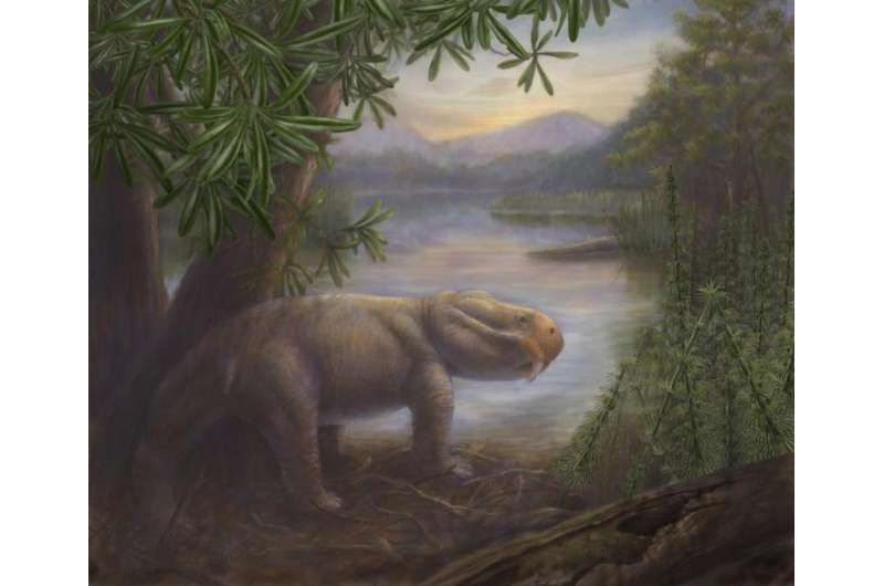 Study explores ancient ecosystem response to a 'big 5' mass extinction