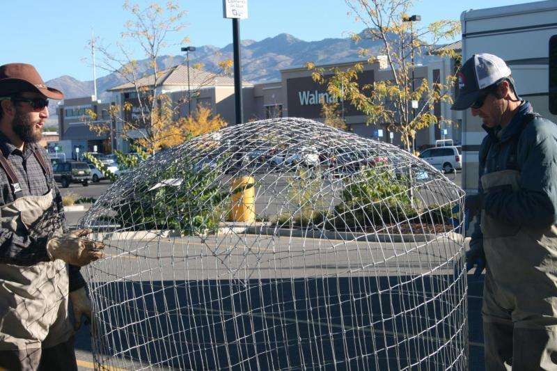 Utah State University Researchers Unload Pond Leveler at Walmart Store