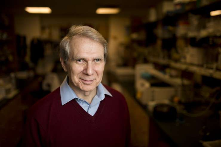 Researchers' discovery may explain difficulty in treating Lyme disease