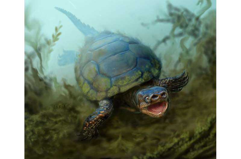 76-million-year-old extinct species of pig-snouted turtle unearthed in Utah