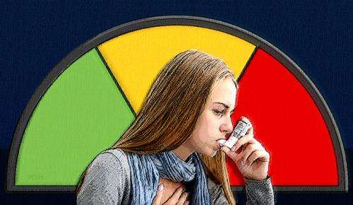 Research team defines genetic subtypes of asthma