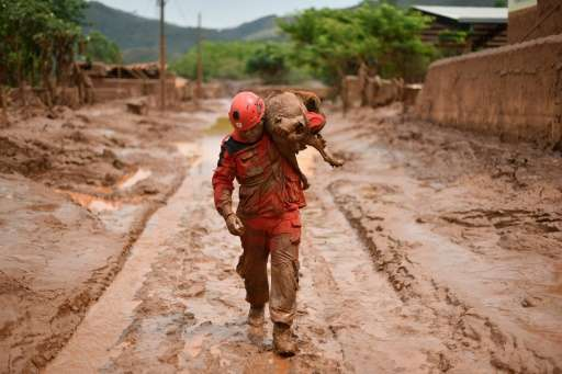 A fireman rescues a dog that was trapped in the mud that swept through the Village of Bento Rodrigues, in Paracatu de Baixo, Min