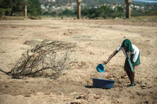 A girl collects water from a puddle in Nongoma, north west of Durban on November 9, 2015