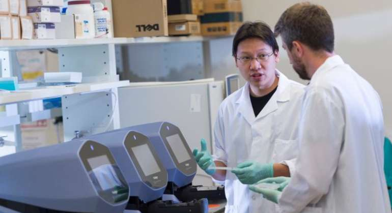 Algorithm helps identify elusive genes that express like clockwork