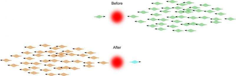 A little light interaction leaves quantum physicists beaming