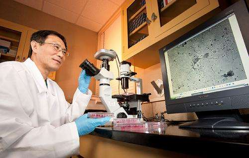 A new vaccine to fight poultry diseases
