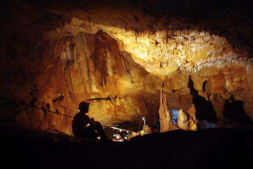 Anthropology: Ancient skull from Galilee cave offers clues to the first modern Europeans