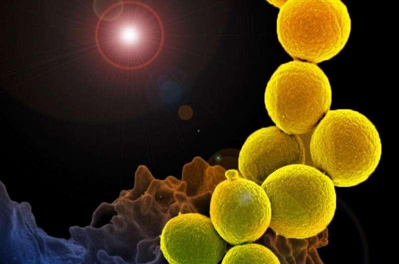 Antibiotic pollution of waterways may create superbugs of tomorrow