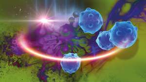 A probe enables tumors to be investigated using complementary imaging techniques