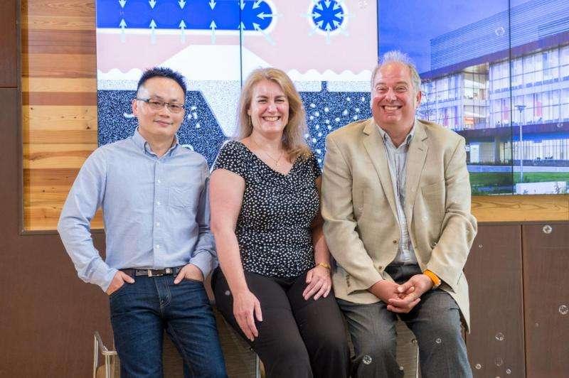 Argonne scientists announce first room-temperature magnetic skyrmion bubbles