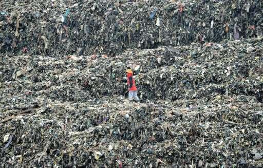 A scavenger sorts through a pile of waste at Bantar Gebang, Bekasi districk, on the outskirts of Jakarta