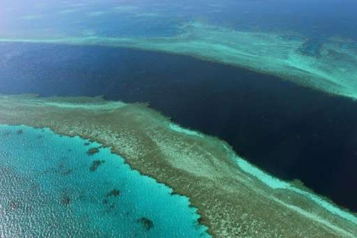 """Australia has hailed a United Nations decision to keep the Great Barrier Reef off its in danger list as """"tremendous"""","""
