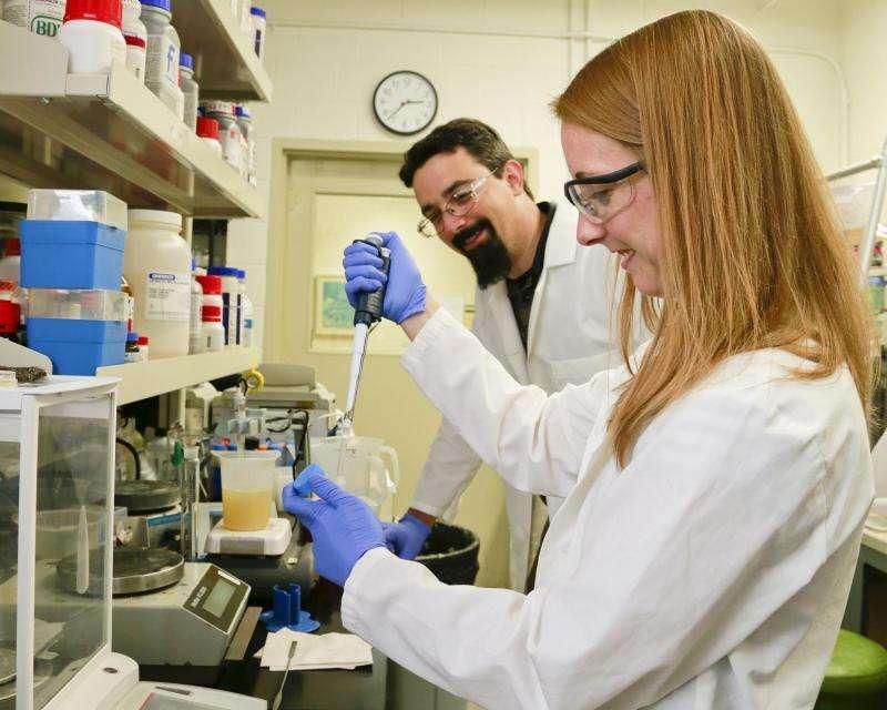 BESC creates microbe that bolsters isobutanol production